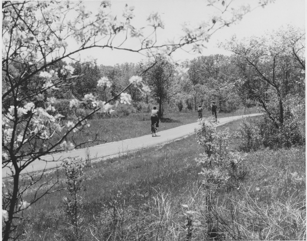 1960s bikeway in a Forest Preserve